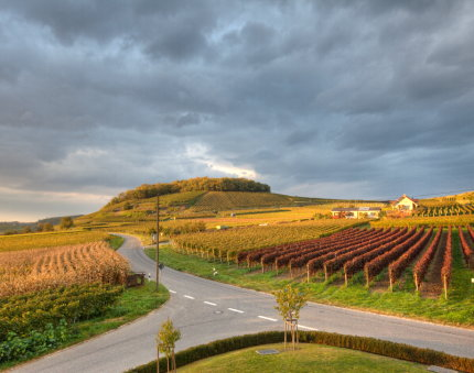Abendstimmung vom Enselberg mit schweren Wolken