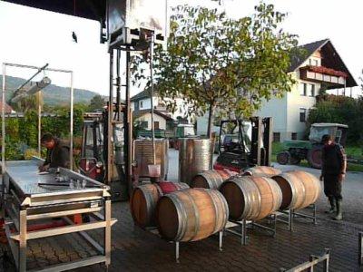 Fässer werden mit 2007 Acolon gefüllt