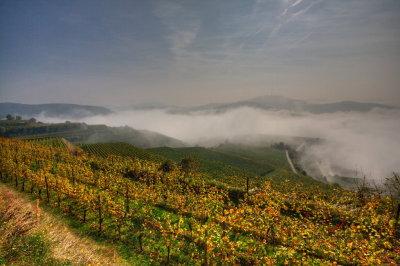 Kaiserstuhl im Nebel