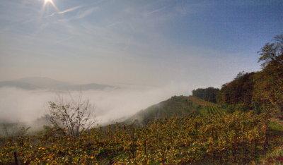 Kaiserstuhl uim Nebel