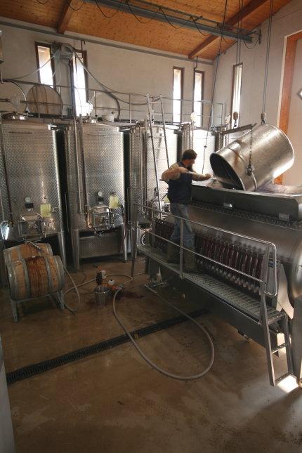 2007 rotwein von der presse ins fass