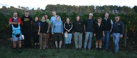 Mitarbeiter bei der Ernte 2008 in Neuseeland